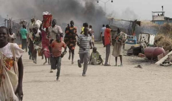 Bandits Kill 2 Herders, Rustle 103 Cows In Kogi