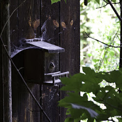 Manfred Stromberg Freeridewoche Rosengarten Trails 07.07.15-9842.jpg