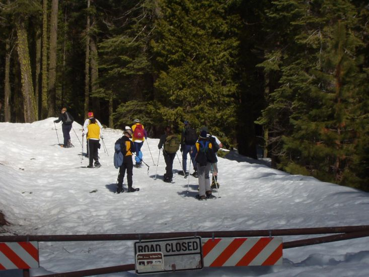 2005 - Snowshoe