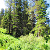 cannell_trail_IMG_1772.jpg