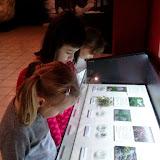 kasztanek w muzeum przyrodniczym