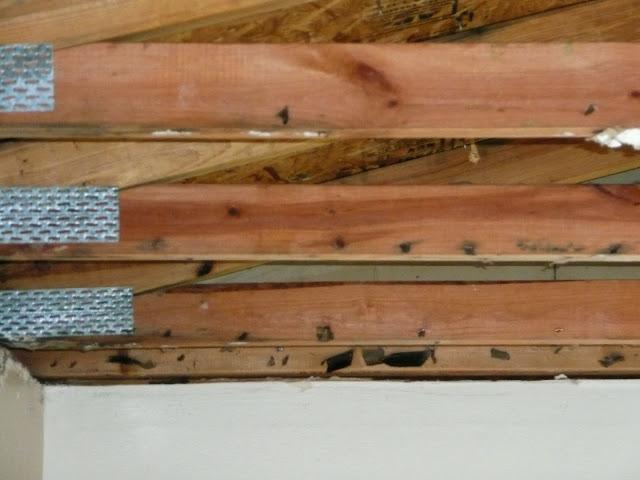 Carpentry - Water damage/after demo/ Cedarburg - P1000080.JPG