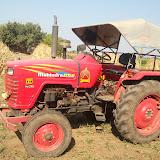 Maher-Farming-01.jpg
