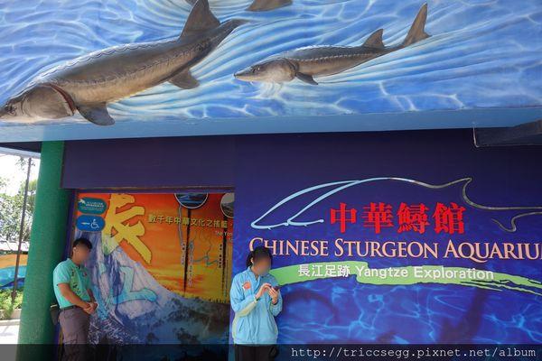 香港 海洋公園之海洋天地,急流天地 | 建蛋的生活軌跡