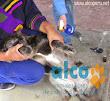 2da asistencia a Pisco por terremoto 2007 (14)