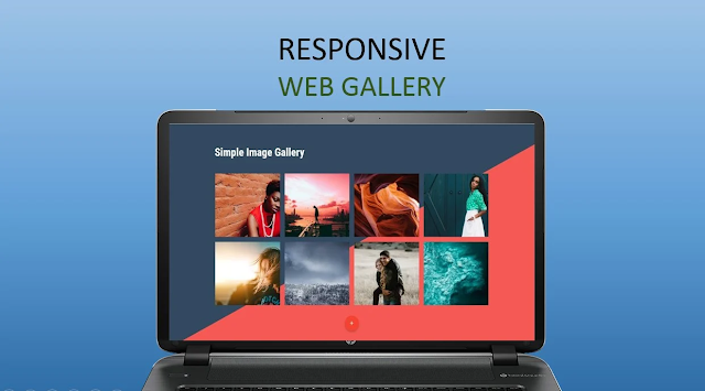 Web Development,Development,