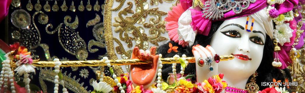 ISKCON Juhu Sringar Deity Darshan on 11th Sep 2016 (24)