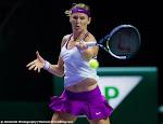 Lucie Safarova - 2015 WTA Finals -DSC_9801.jpg