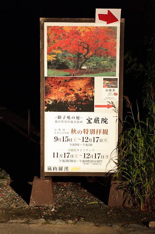 嵐山 花 筏