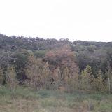 Fall Vacation 2012 - IMG_20121023_141333.jpg