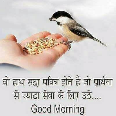 Good Morning Quotes Wording Pics