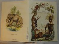 603 07-cahier d'histoire naturelle