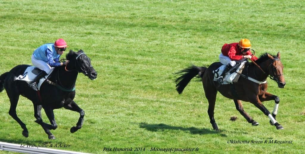 Photos Auteuil le 27-09-2014 IMG_4341