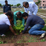 Gurukul Green Revolution (60).jpg