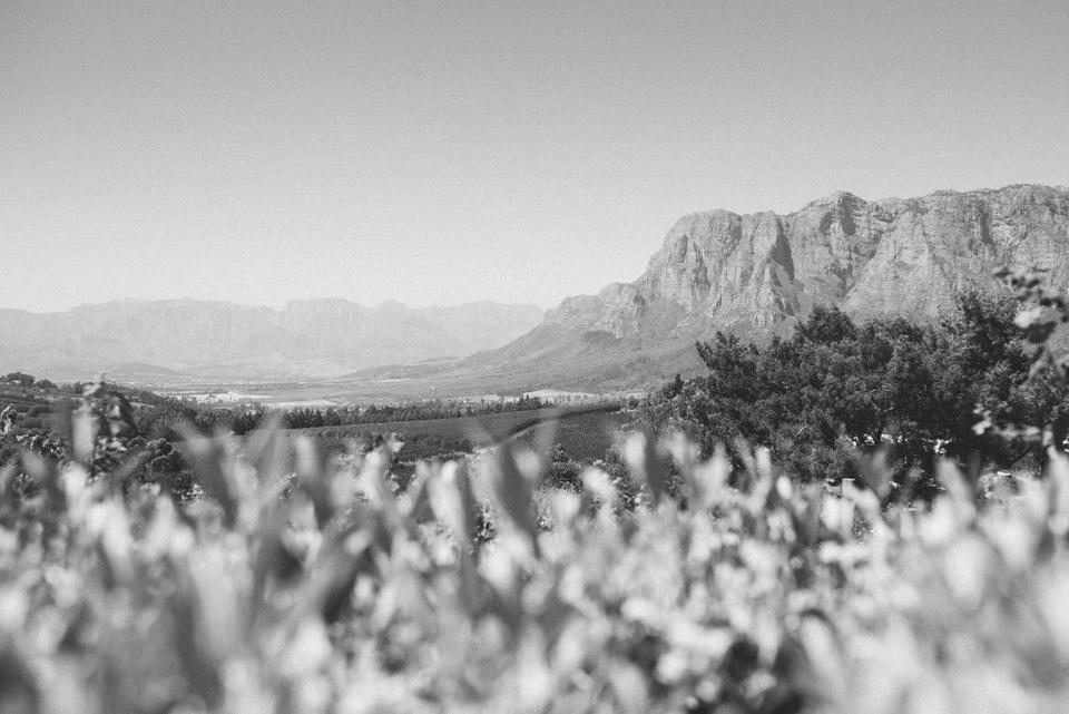 Grace and Alfonso wedding Clouds Estate Stellenbosch South Africa shot by dna photographers 09.jpg