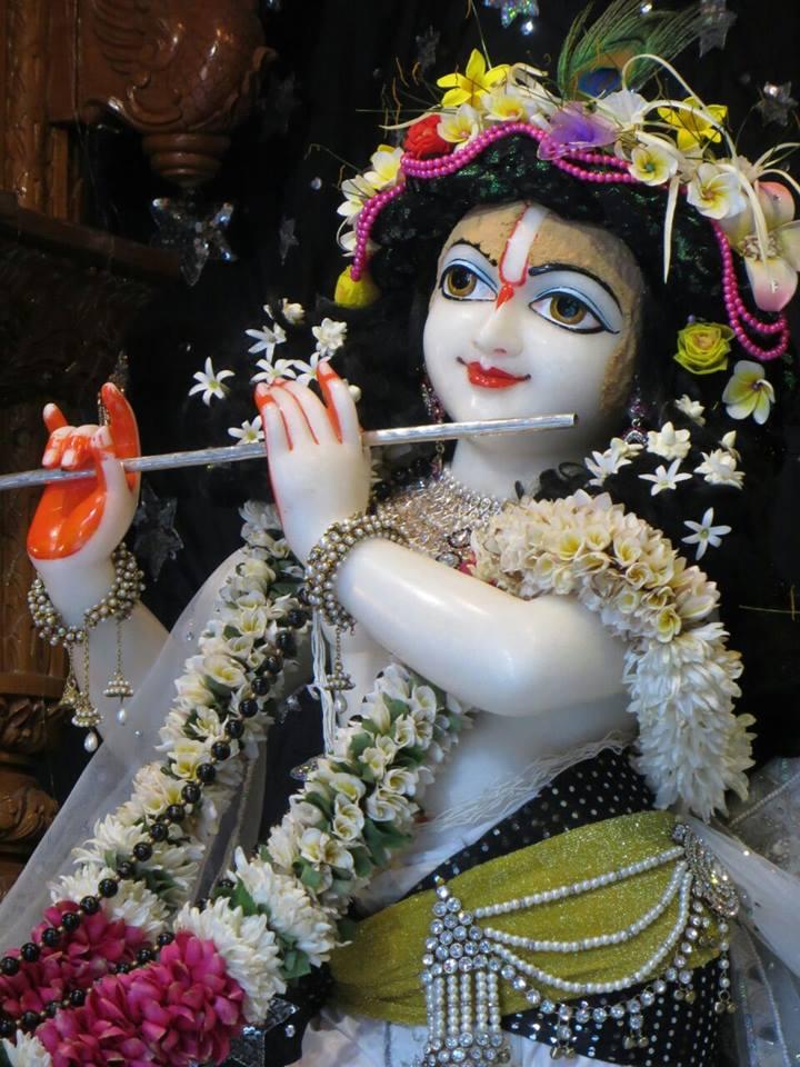 ISKCON Aravade Deity Darshan 11 May 2016 (10)