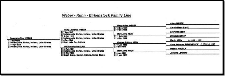 Birkenstock Chart Framed