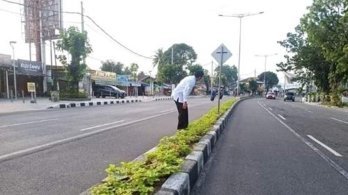 Ada Ubi Jalar di Taman Median Jalan di Padang
