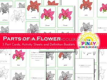 Montessori Inspired Parts of a Flower Nomenclature Cards and Definition Booklet