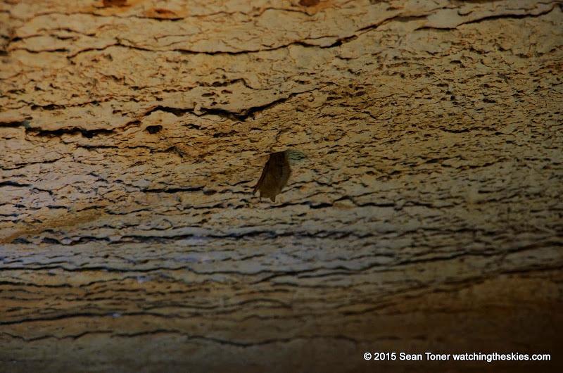 01-26-14 Marble Falls TX and Caves - IMGP1221.JPG