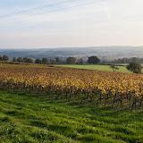 Guimbelot dégustation des chardonnay et chenin 2012 - 2013%2B11%2B16%2BGuimbelot%2Bd%25C3%25A9gustation%2Bdes%2Bchardonnays%2Bet%2Bchenins%2B2012-101.jpg