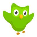 Duolingo on the Web