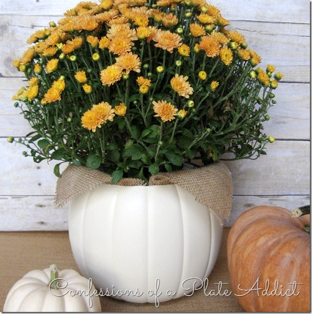 CONFESSIONS OF A PLATE ADDICT  Easy and Inexpensive Faux Pumpkin Planter6