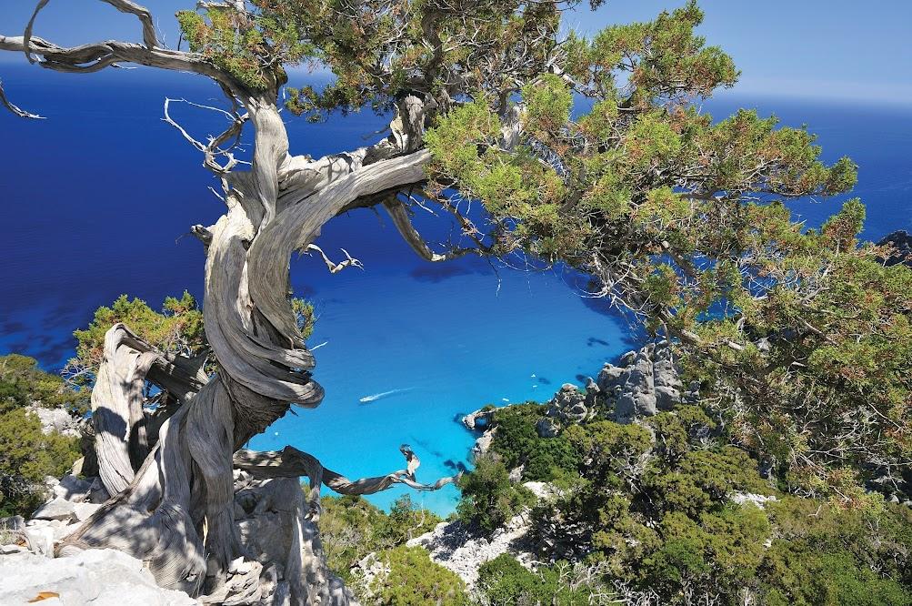 Goloritze Sardegna