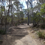 Track to Bournda Lagoon car park (106705)