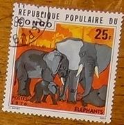 timbre Congo 003