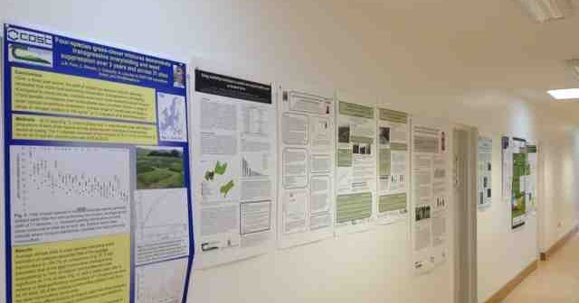 PhD Skills: Six reasons why PhD students should make poster presentations