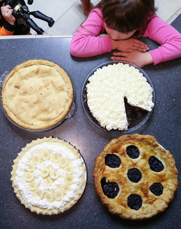overhead photo of four different pies