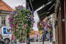 Stavanger_140903_11_53_26.jpg