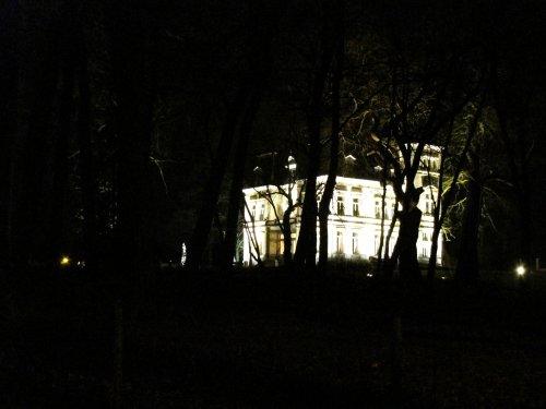 Daar daagt het mooi verlichte kasteel van Saffelberg op tussen de bomen.