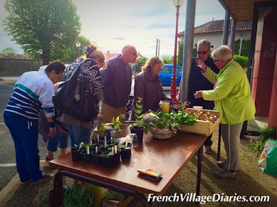 French Village Diaries plant swap