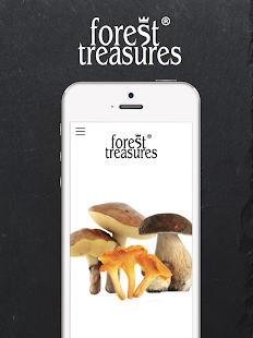 Forest Treasures- screenshot thumbnail