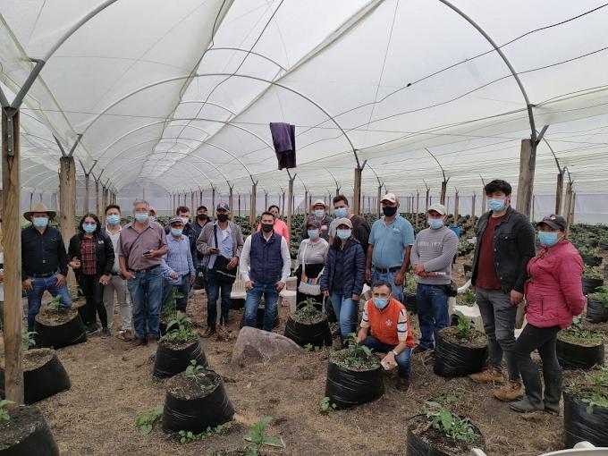 Frutas comerciales se consolida en García Rovira, apoyando a los fruticultores de la región