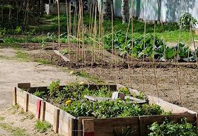 Agrolab: formación en el cultivo de huertos y la comercialización de productos