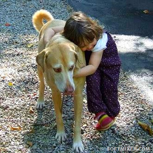 kid-hugging-dog
