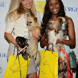 WWW.ENTSIMAGES.COM -       at       A Date With Your Dog in Honour of Clarissa Baldwin OBE at George Club, London September 9th 2014Celebrities attending The Dog's Trust party in honour of their chief exec Baldwin.                                                 Photo Mobis Photos/OIC 0203 174 1069