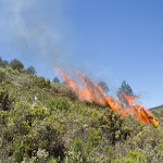 Incendi Controlat Onil-7.jpg