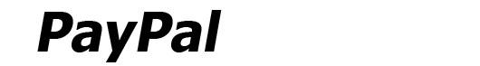 PayPal font logo Verdana Bold Italic