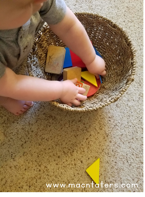 Shape Discovery Basket