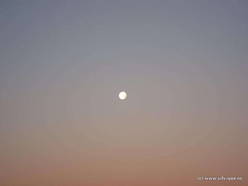 2015.12.27 - Fagaras - Creasta tr Rosu - Ref Scara