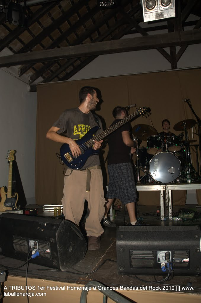 A TRIBUTOS 1er Festival Homenaje a Grandes Bandas del Rock 2010 - DSC_0224.jpg