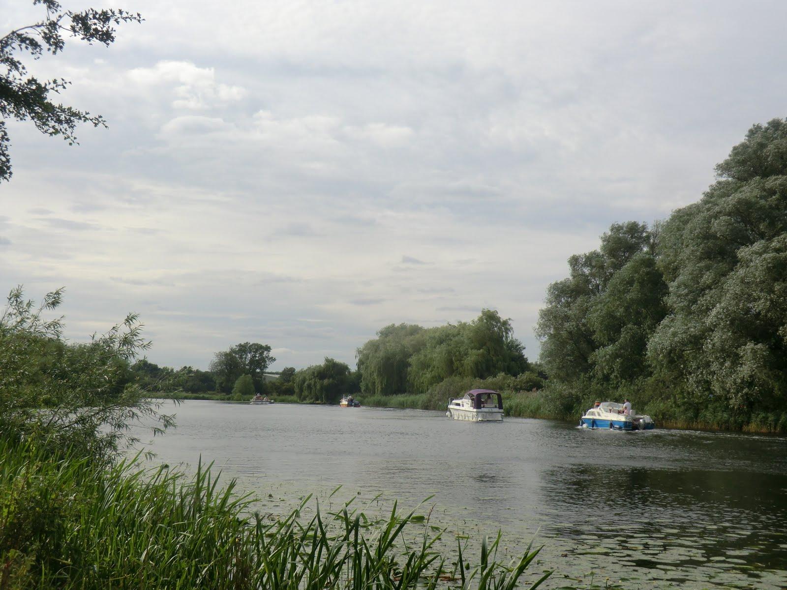 CIMG8944 Riverside path back to Huntingdon
