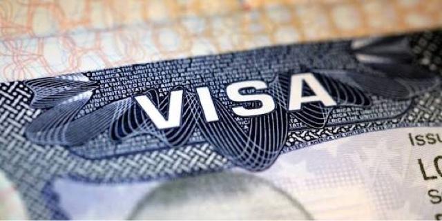 Гостьові та туристичні візи в США