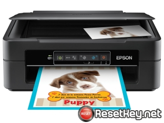 Reset Epson XP-241 ink pads are at the end of their service life