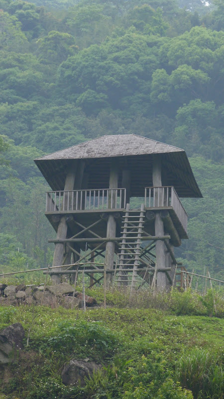 TAIWAN  Miaoli county,proche de Taufen - P1130272.JPG