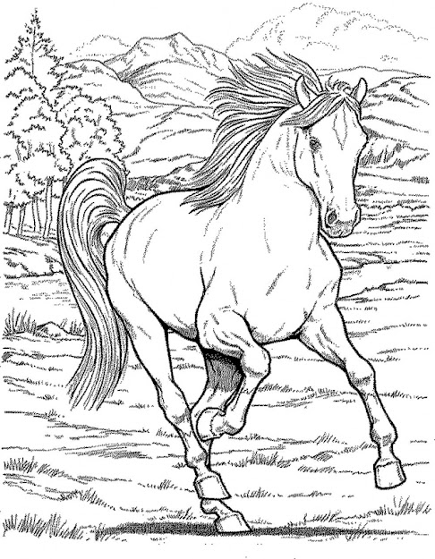 Ideas About Horse Coloring Pages On Pinterest Coloring